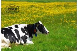 Rinderknochen mit Fleisch