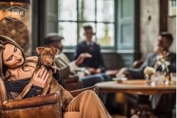 dogmeat-eend