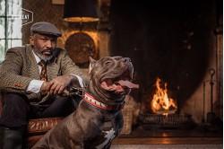 dogmeat-5-Animal-Base
