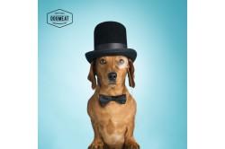 dogmeat-brokken-geperst